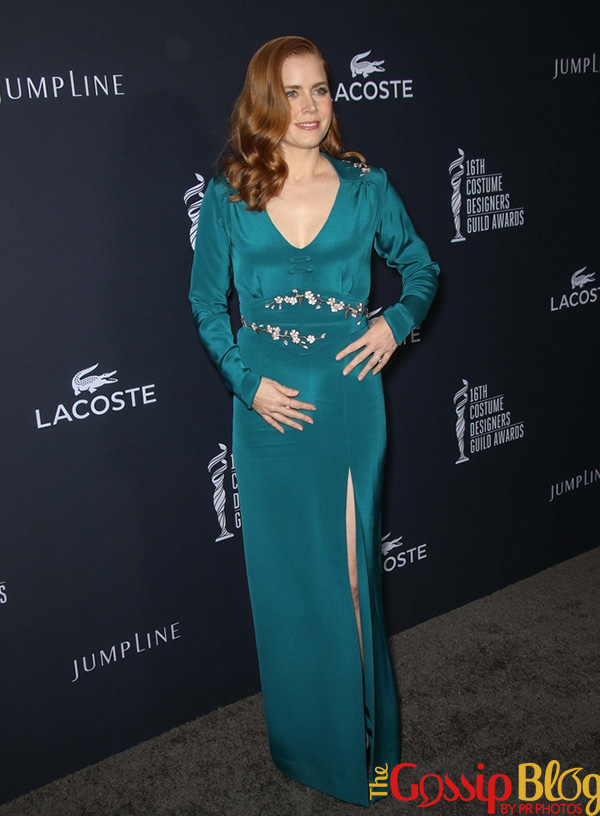 Amy Adams at 2014 Costume Designers Guild Awards