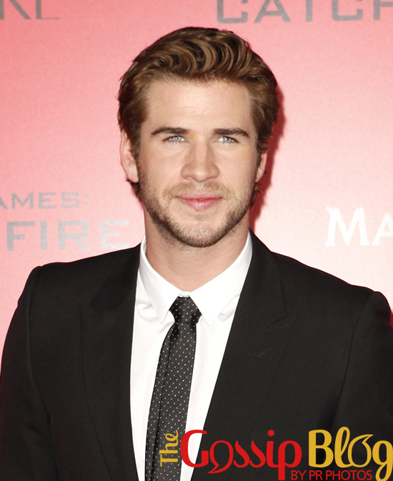 Liam Hemsworth at 'Catching Fire' Los Angeles Premiere