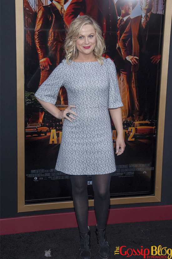 Amy Poehler at 'Anchorman2' NYC Premiere
