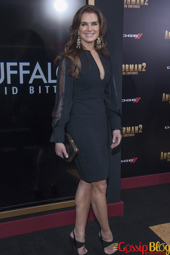 Brooke Shields at 'Anchorman2' NYC Premiere