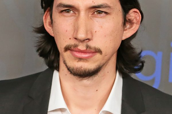 Adam Driver, 'Girls'
